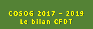 COSOG 2017 - 2019 Le bilan CFDT